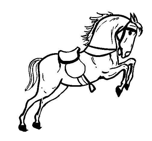 Desenhos De Cavalo Para Semana Farroupilha Faceis De Desenhar 3