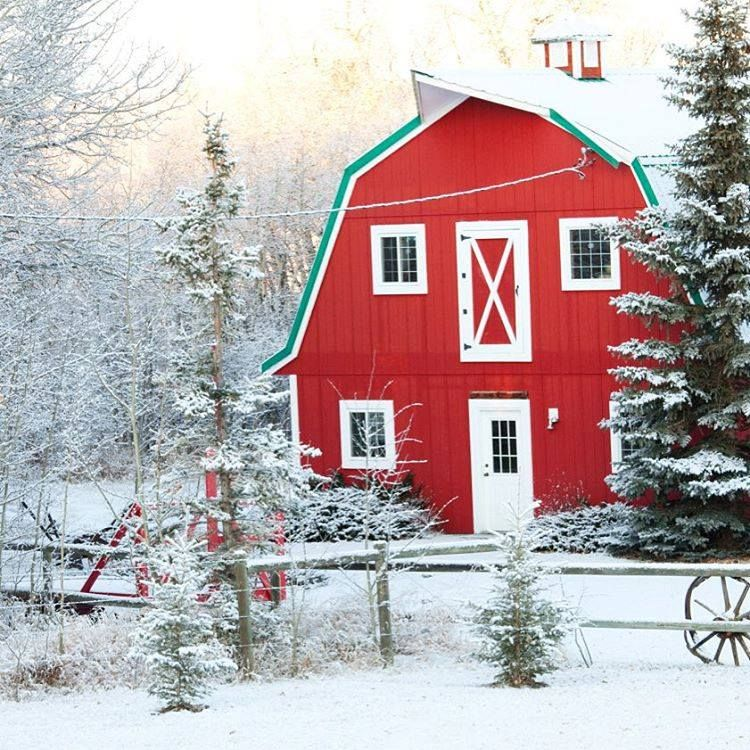 Red barns take on extra meaning at Christmas time. What does this make you think of? http://www.hometipsforwomen.com/what-farmhouses-can-teach-us