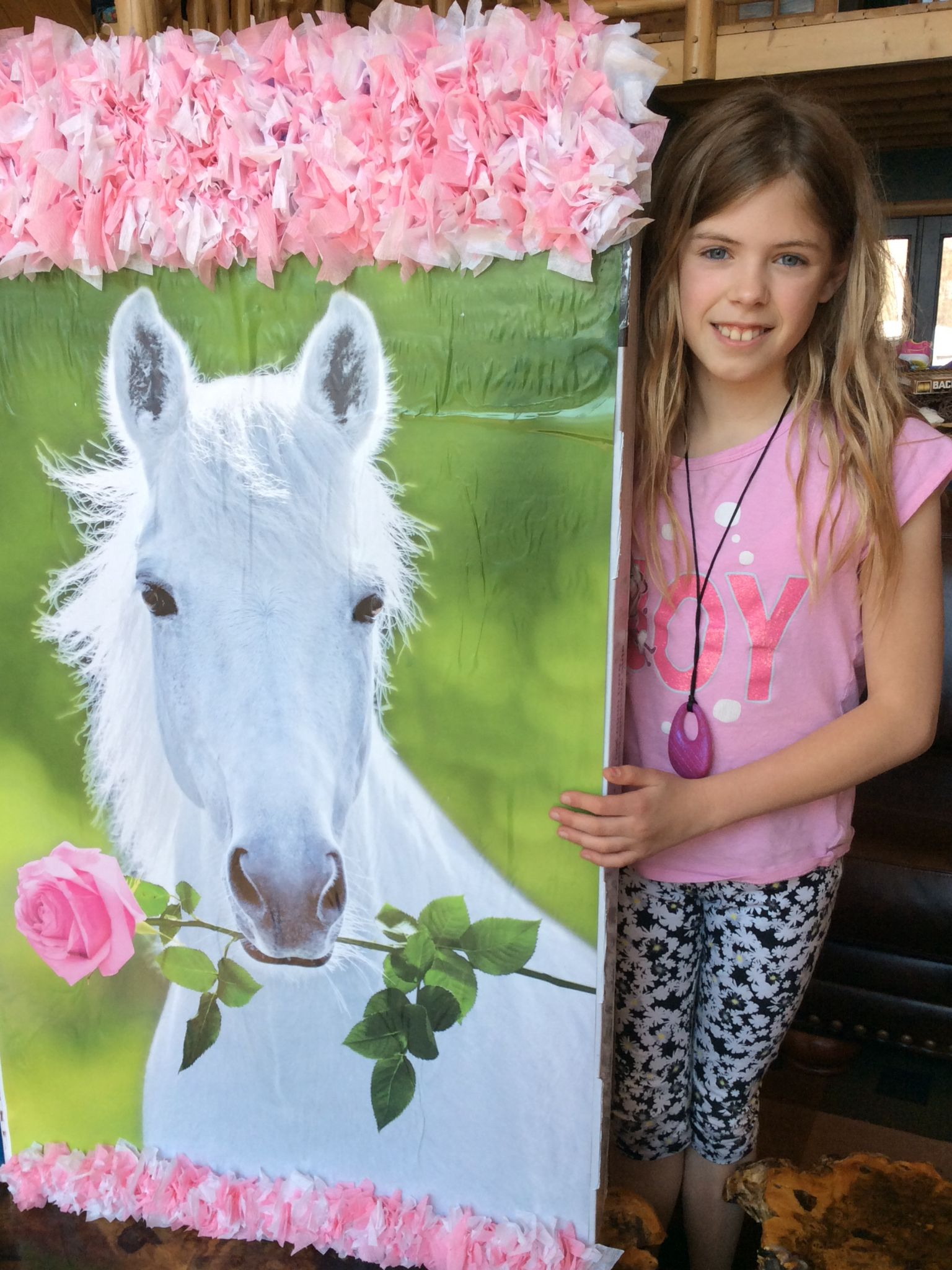 Giant Horse Piñata for under $5 TVbox+poster+tissue