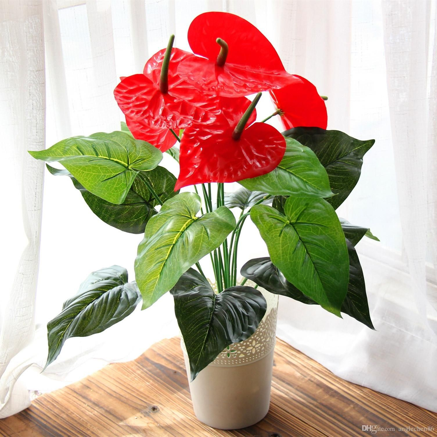 Fresh Best Place To Buy Bonsai Trees Online Images Anthurium Bouquet Silk Flower Bouquets Small Potted Plants