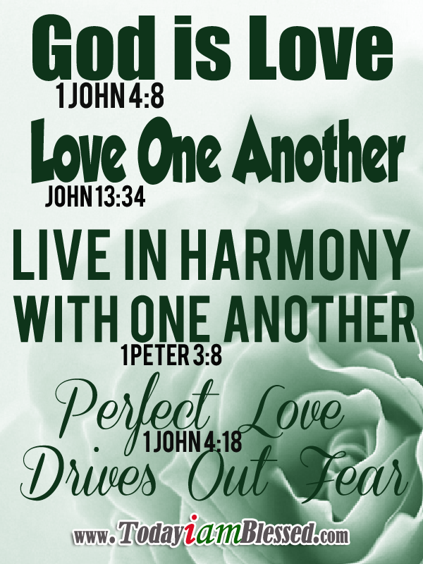 Perfect love bible
