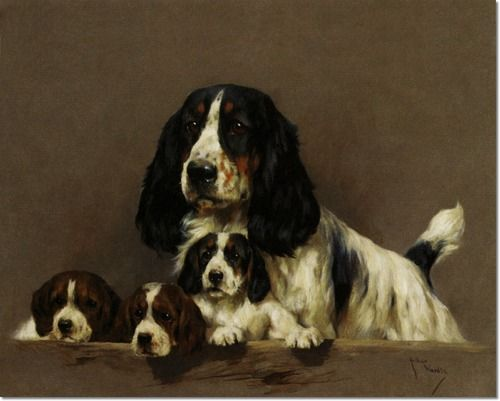 Arthur Wardle A Cocker Spaniel With Her Puppies Dog