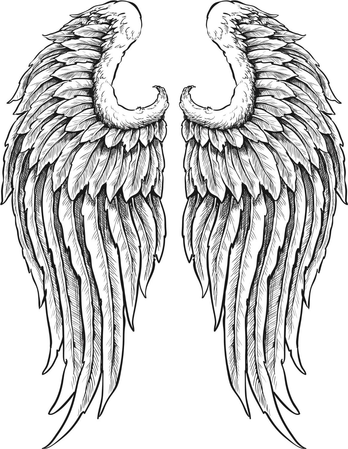 40 awesome detailed angel wings images รอยสกรปปก งาน