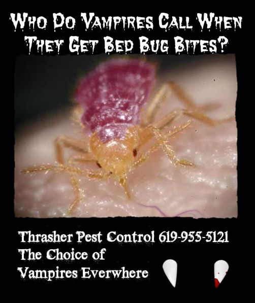 Bed Bug Vampires Bed Bugs Bed Bug Control Bed Bug Bites