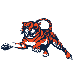 Vintage Auburn Tigers Vintage College Apparel Auburn Tigers Football Logo Auburn Football