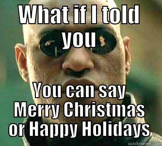 Happy Holidays Vs Merry Christmas Cat Memes Funny Cat Memes Funny Cats