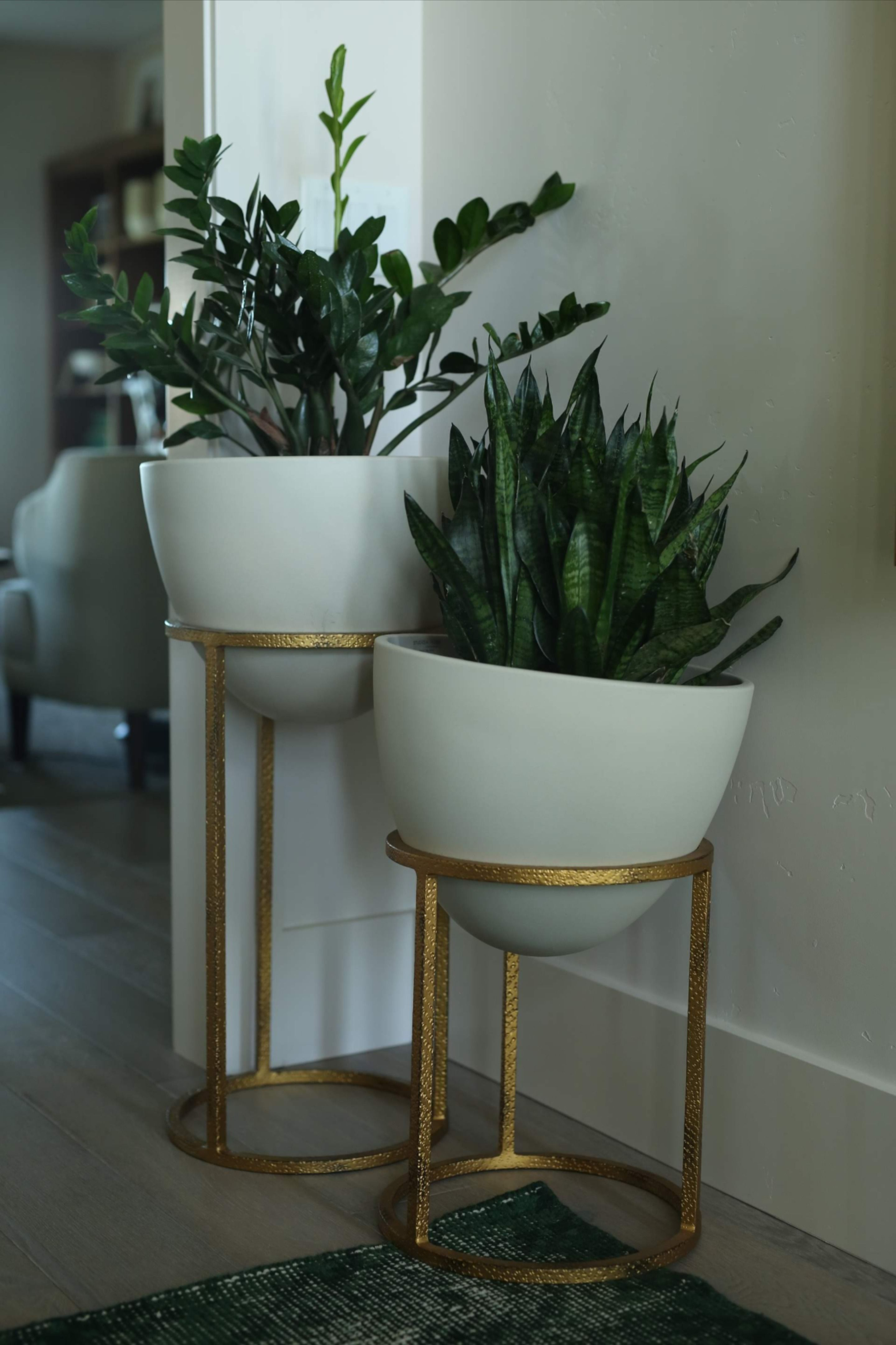 Find Modern Accent Pieces Like These At Fisher Home Furnishings