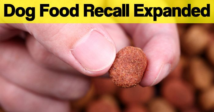 Update Dog Food Recall Due To Metal Fragments Expanded To More