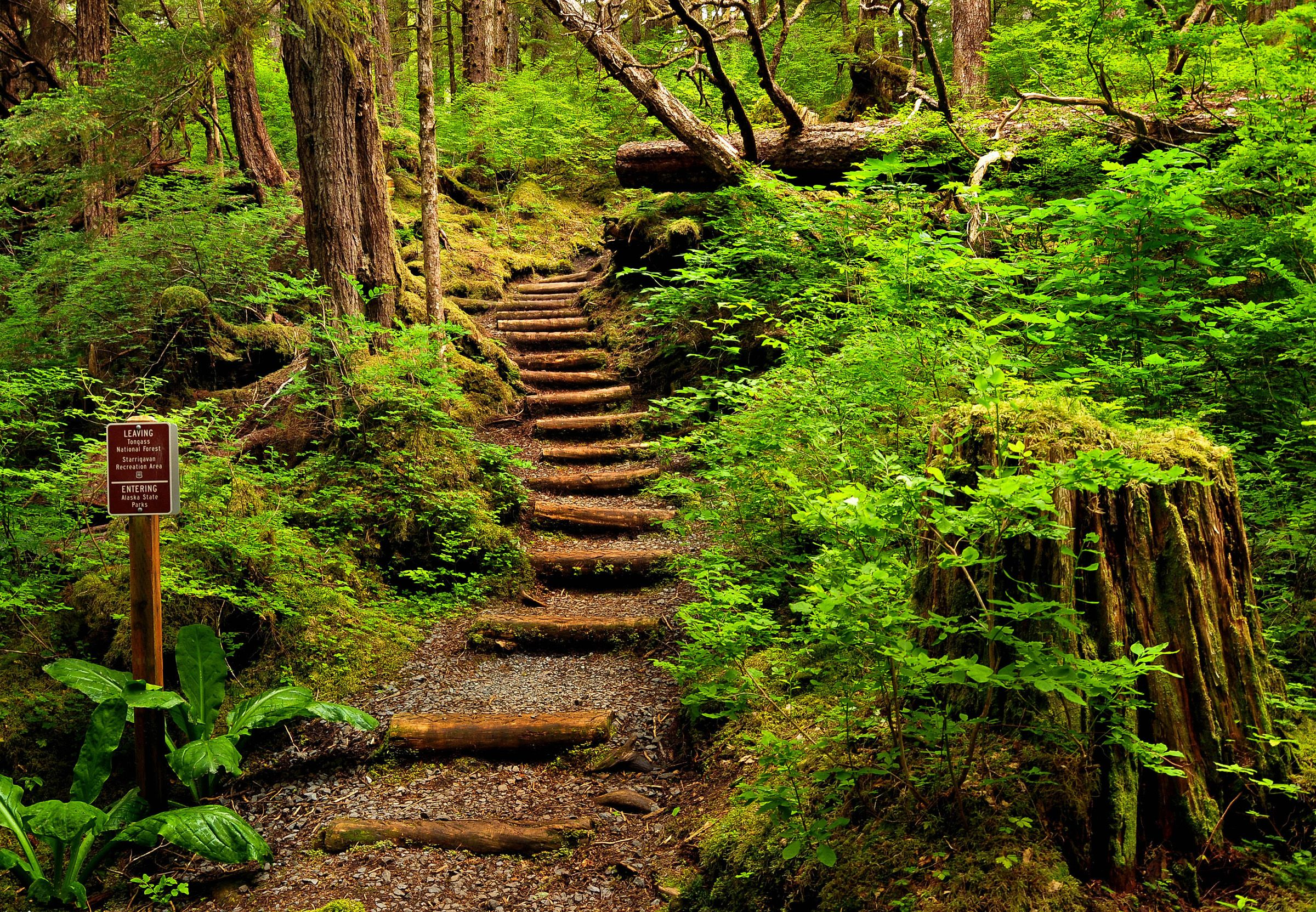 Trail Information | Sitka Trail Works | Tongass national forest ...