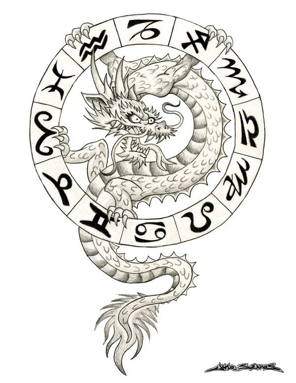 Zodiac Dragon Dragon Tattoo Dragon Tattoo Outline Zodiac