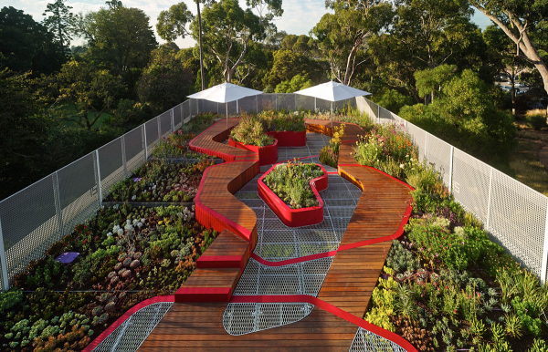 Australian Plants for Green Roofs and Walls | Living roofs ...