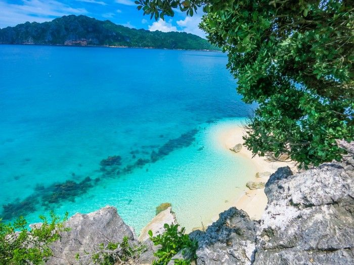 The Philippines 🇵🇭 on Instagram: Oslob - Cebu
