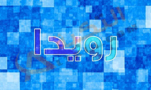 معنى اسم رويدا Rewida في قاموس معاني الأسماء للغة العربية وهو اسم مؤنث يطلع على البنات من أصل عربي وديني وقليل التسمية وتم ذكره في الق Neon Signs Signs Neon
