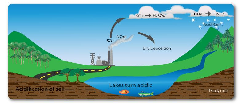 acid rain case essay Acid rain is a result of air pollution that is harmful to the environment, generally caused by fuels being burnt when any type of fuel is burnt, many different chemicals are produced these gases that are released react with the water in clouds, and the rain from these clouds is acid rain.