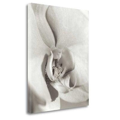 Tangletown Fine Art 'Florison - 22' by Alan Blaustein Graphic Art on Wrapped Canvas