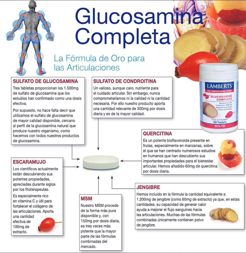 Condroitina y glucosamina propiedades