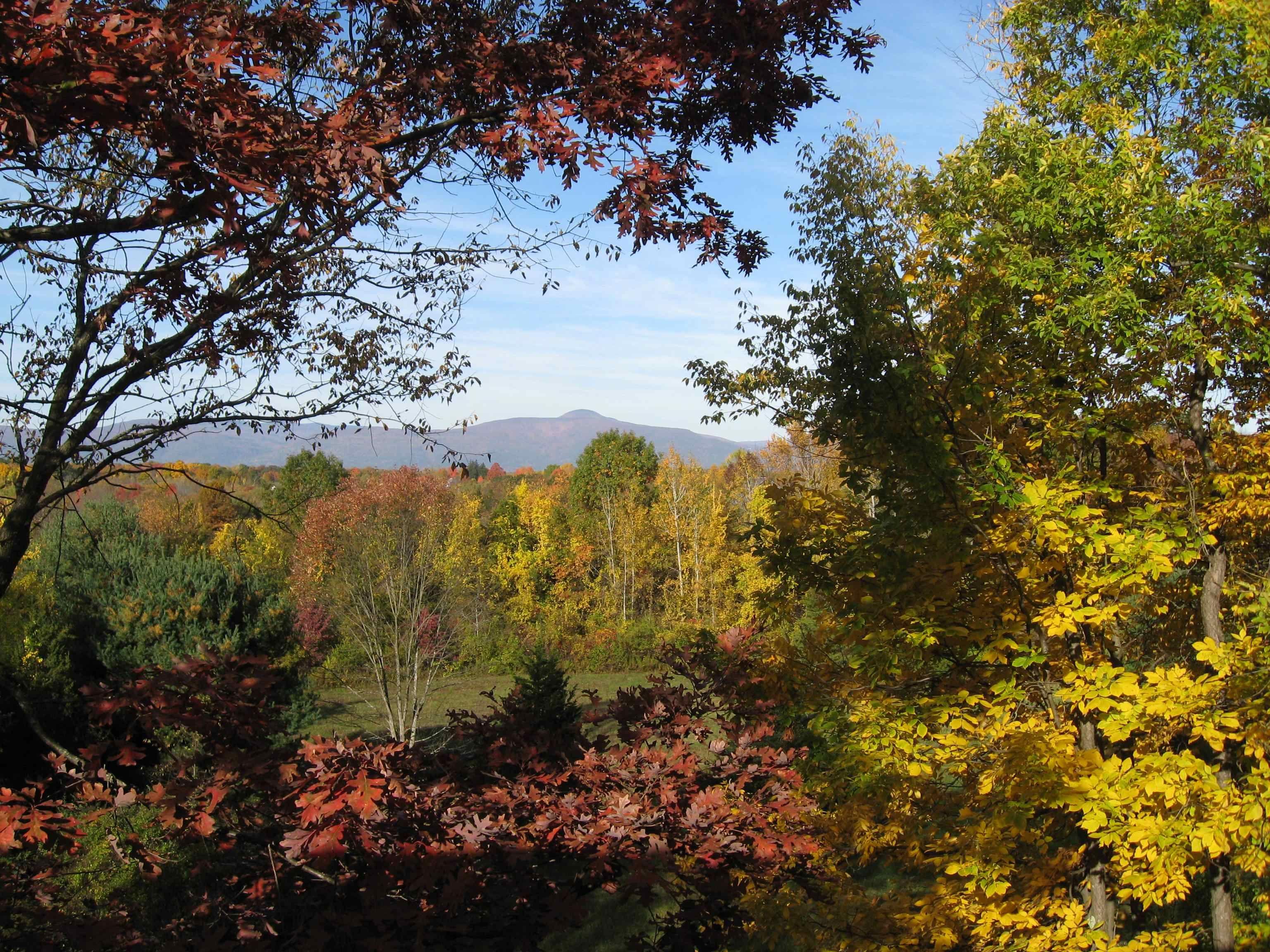 free autumn nature screensavers