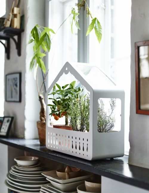 IKEA Fan Favorite: IKEA PS 2014 greenhouse. Suitable for both indoor and  outdoor use