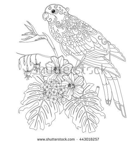 Tropical parrot flowers and leaves Page of coloring book for