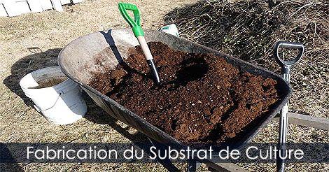 Jardinage En Contenant Composer Des Jardinieres Fleuries