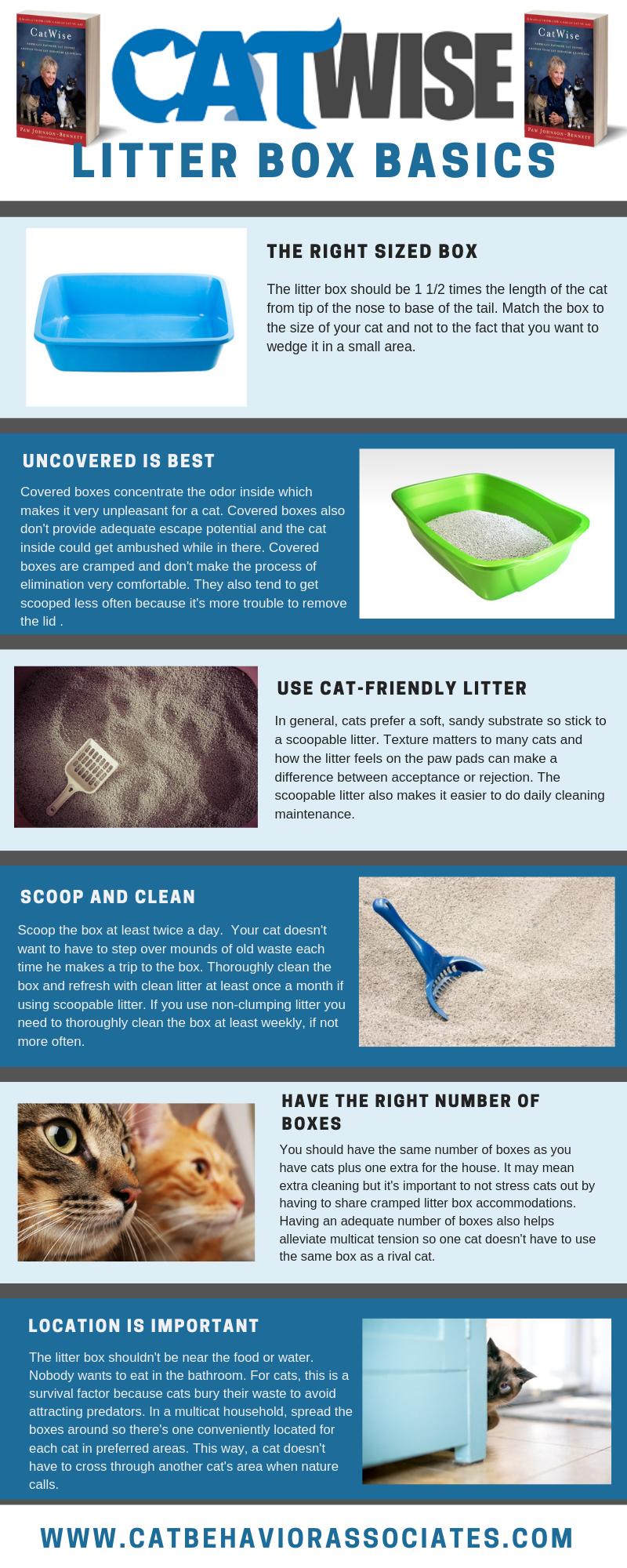 Catwise Litter Box Basics Litter Box Best Cat Litter Cat Infographic