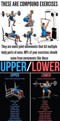upper/lower workout  gym workout for beginners