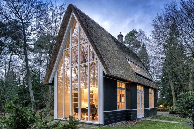 petite maison bois avec jardin moderne fen tres de plafond au sol arbres buis et arbustes. Black Bedroom Furniture Sets. Home Design Ideas