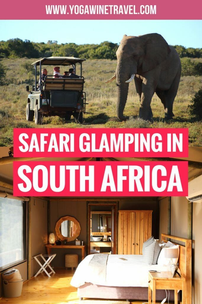 Ultimate Safari Glamping Experience at Bukela Game Lodge