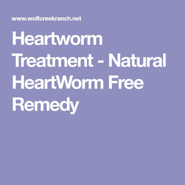 natural heartworm treatment. Heartworm Treatment - Natural HeartWorm Free Remedy