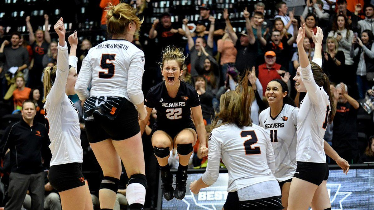 Oregon State Vball Beavervball Twitter Oregon State College Athletics Volleyball
