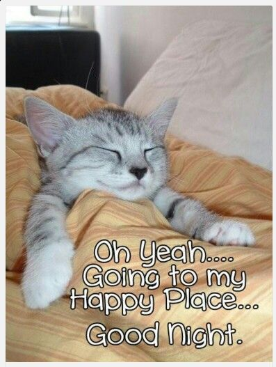 Image result for images good night funny quotes