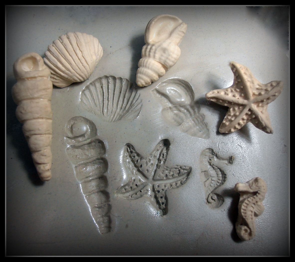 Handmade stamp5 sea shell bisque stamps for stamping on