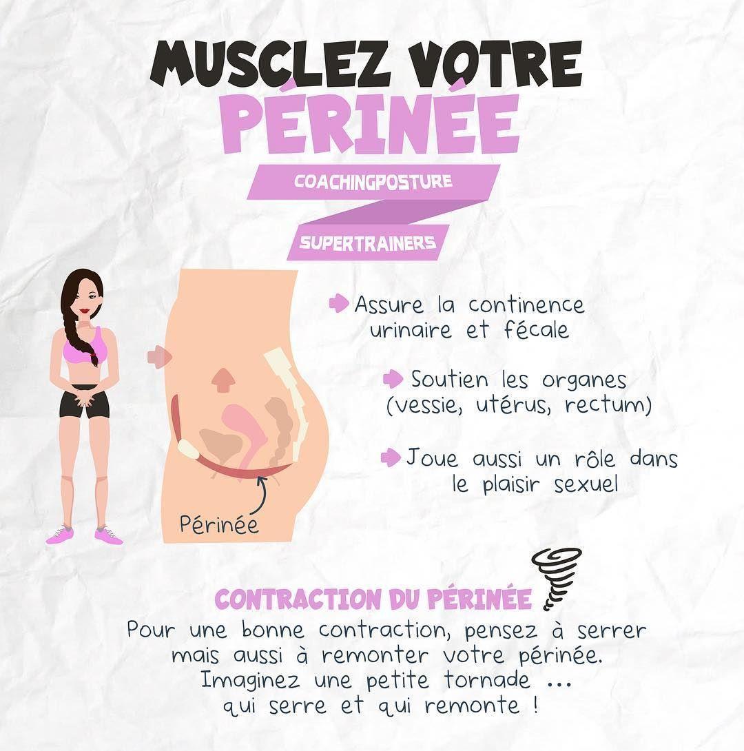 Transformation Physique Quiz en 2020 | Le périnée, Fitness