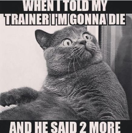 #fitness  -  #backtotheGymHumor  #fitness  #fridayGymHumor  #girlGymHumor  #GymHumorbeastmode  #GymH...