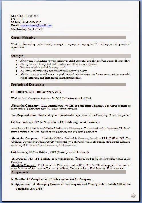 Example Of Curriculum Vitae Excellent Curriculum Vitae  Resume