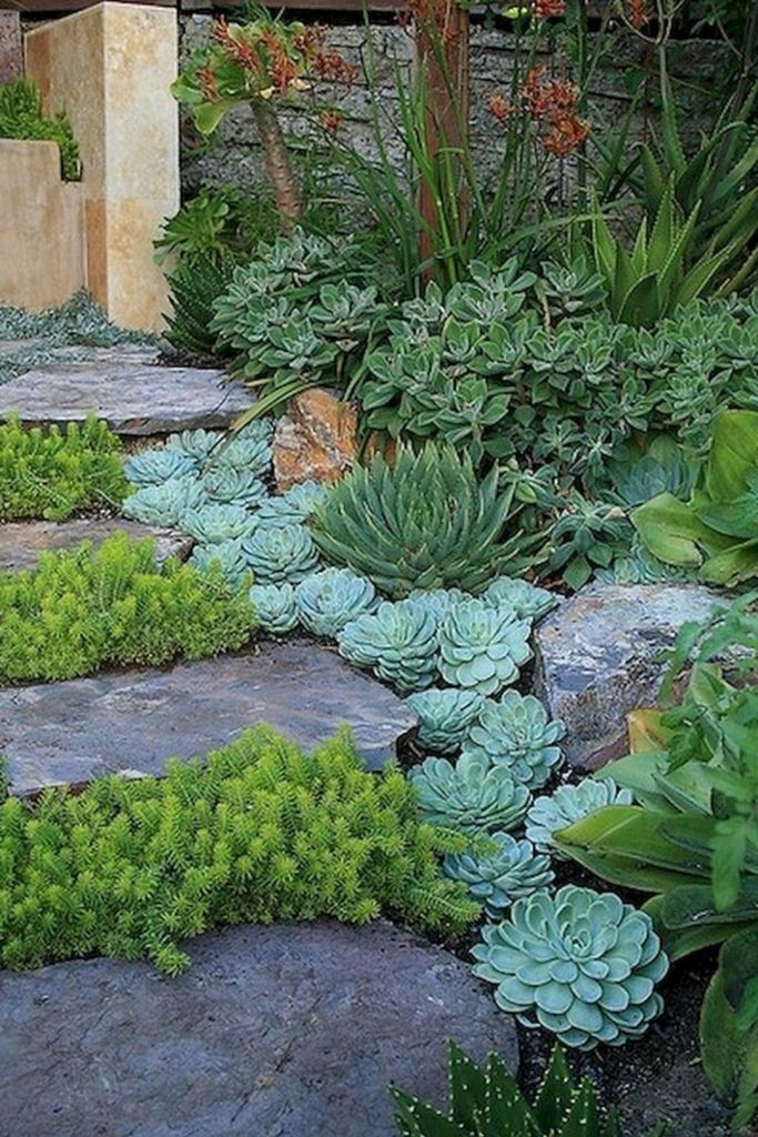 impressive front succulent garden ideas with images on beautiful front yard rock n flowers garden landscaping ideas how to create it id=18073