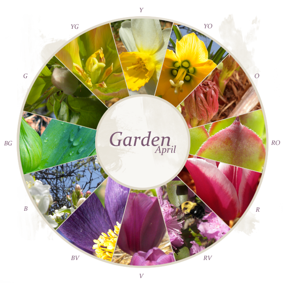 17 Best images about Color Wheel on Pinterest Gardens Flower