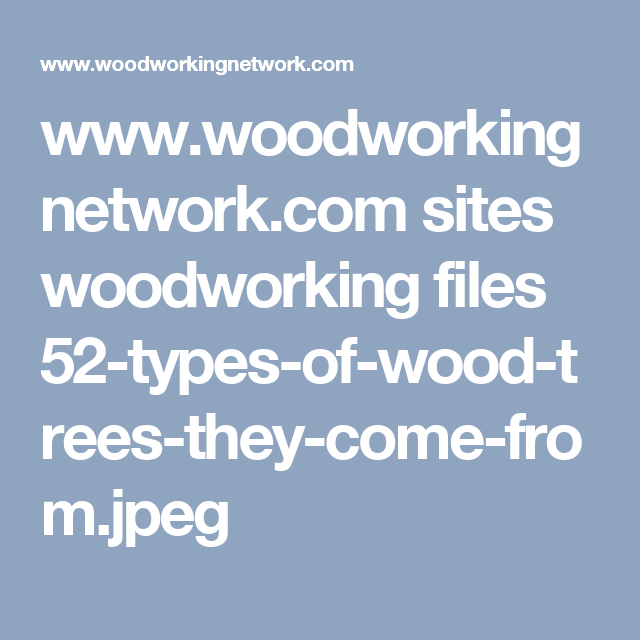 Www Woodworkingnetwork Com Sites Woodworking Files 52 Types Of Wood Trees They Come From Jpeg