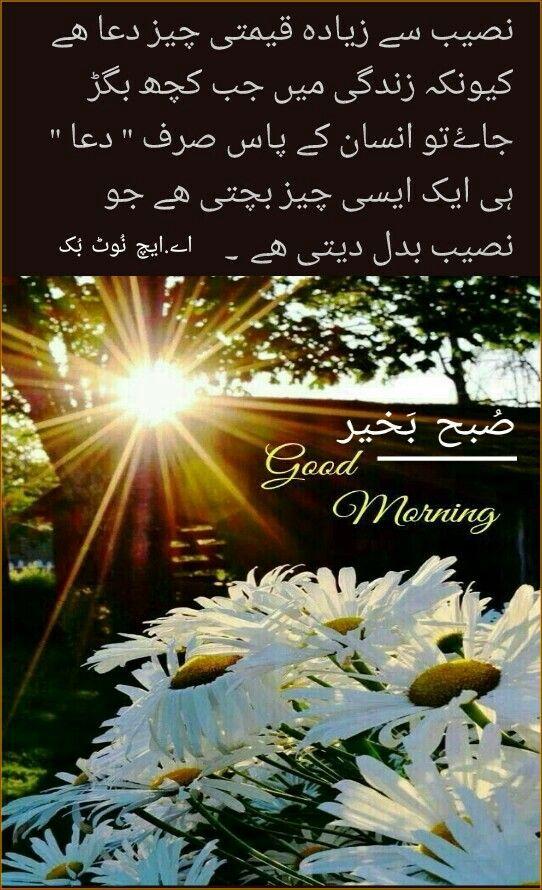 السلام عليكم ورحمة الله وبركاته ص بح ب خیر اے ایچ ن وٹ ب ک Good Morning Quotes Good Morning Beautiful Family