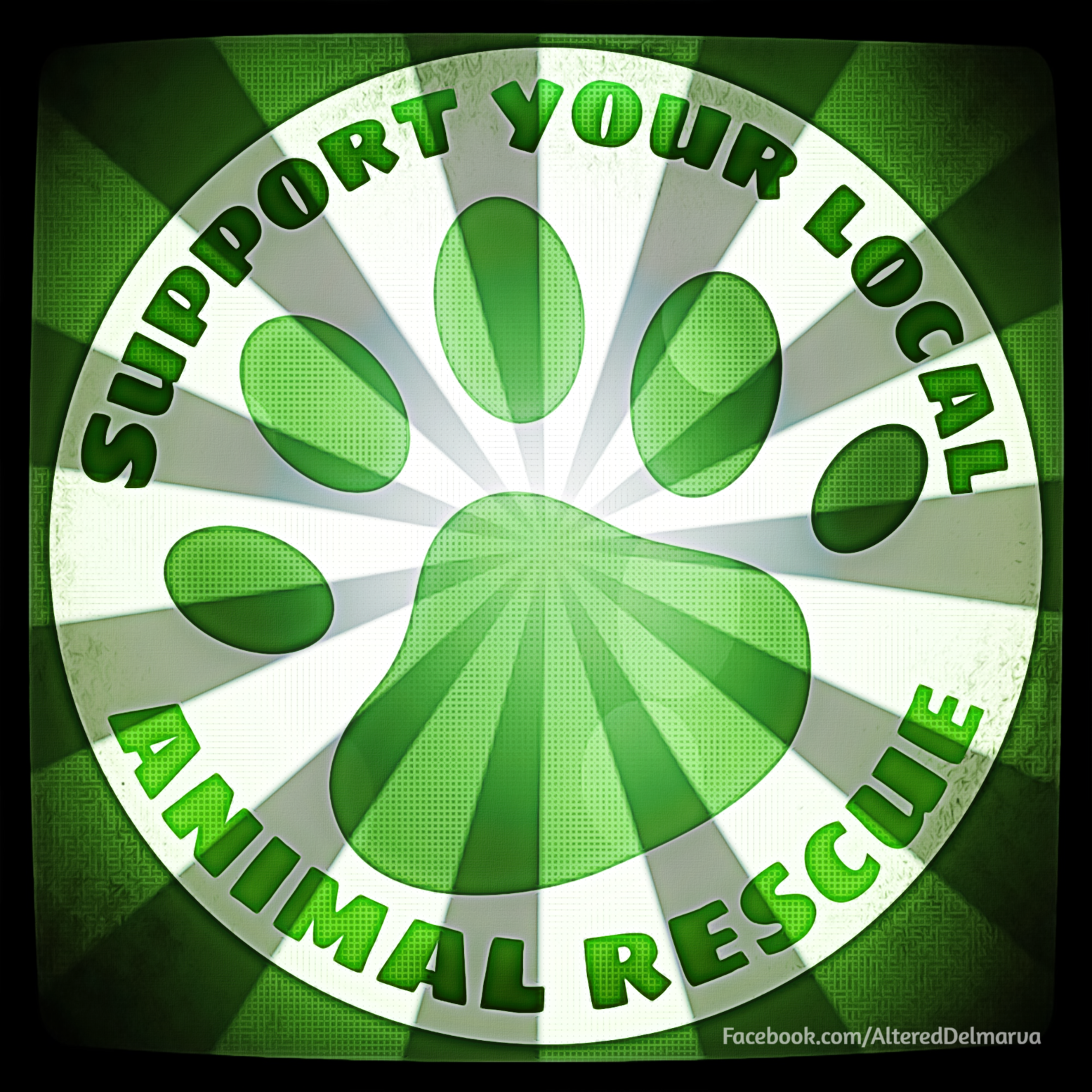 Visit Your Local Humane Society Or A Rescue To See What They Can Use Help With It S A Great Community Or Family Project