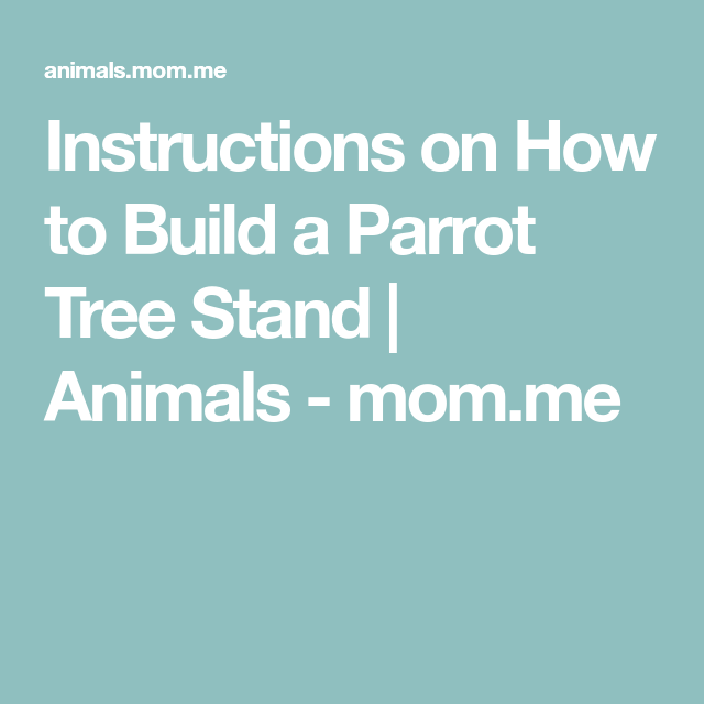 Instructions On How To Build A Parrot Tree Stand Animals Mom
