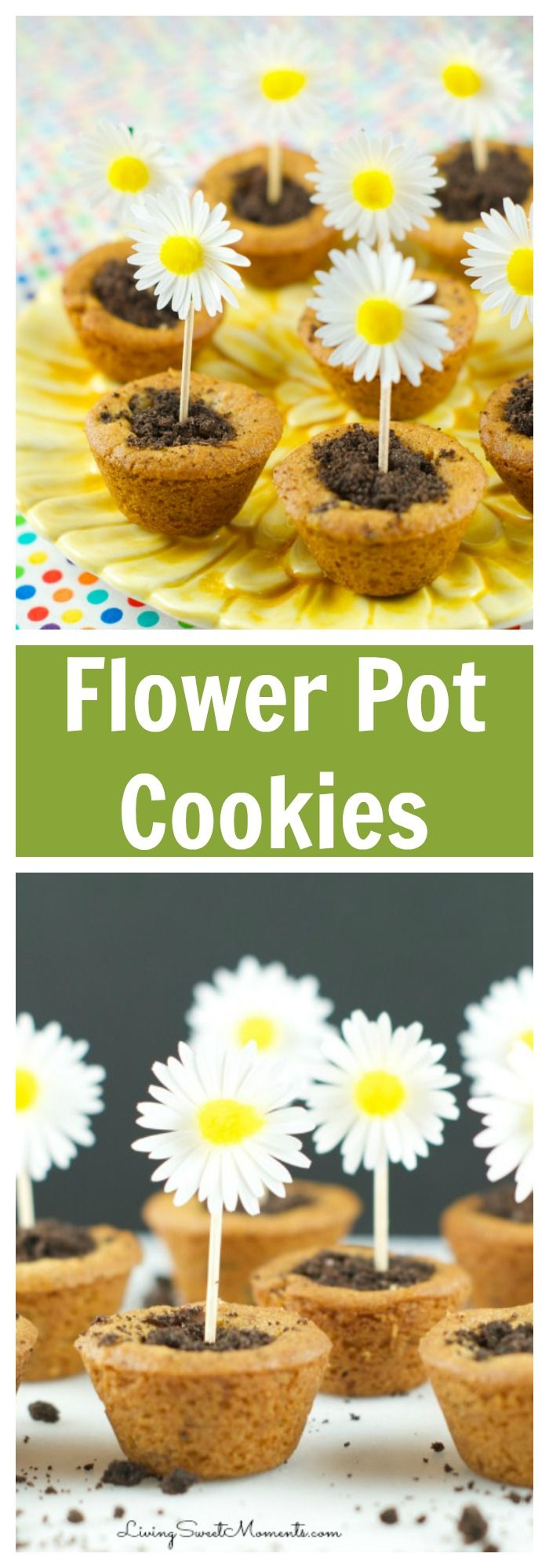 Flower Pot Cookies Recipe Easy cookie recipes, Best