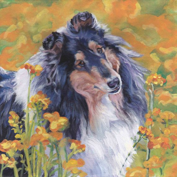 Tricolor Rough Collie portrait CANVAS print of LA by TheDogLover, $39.99