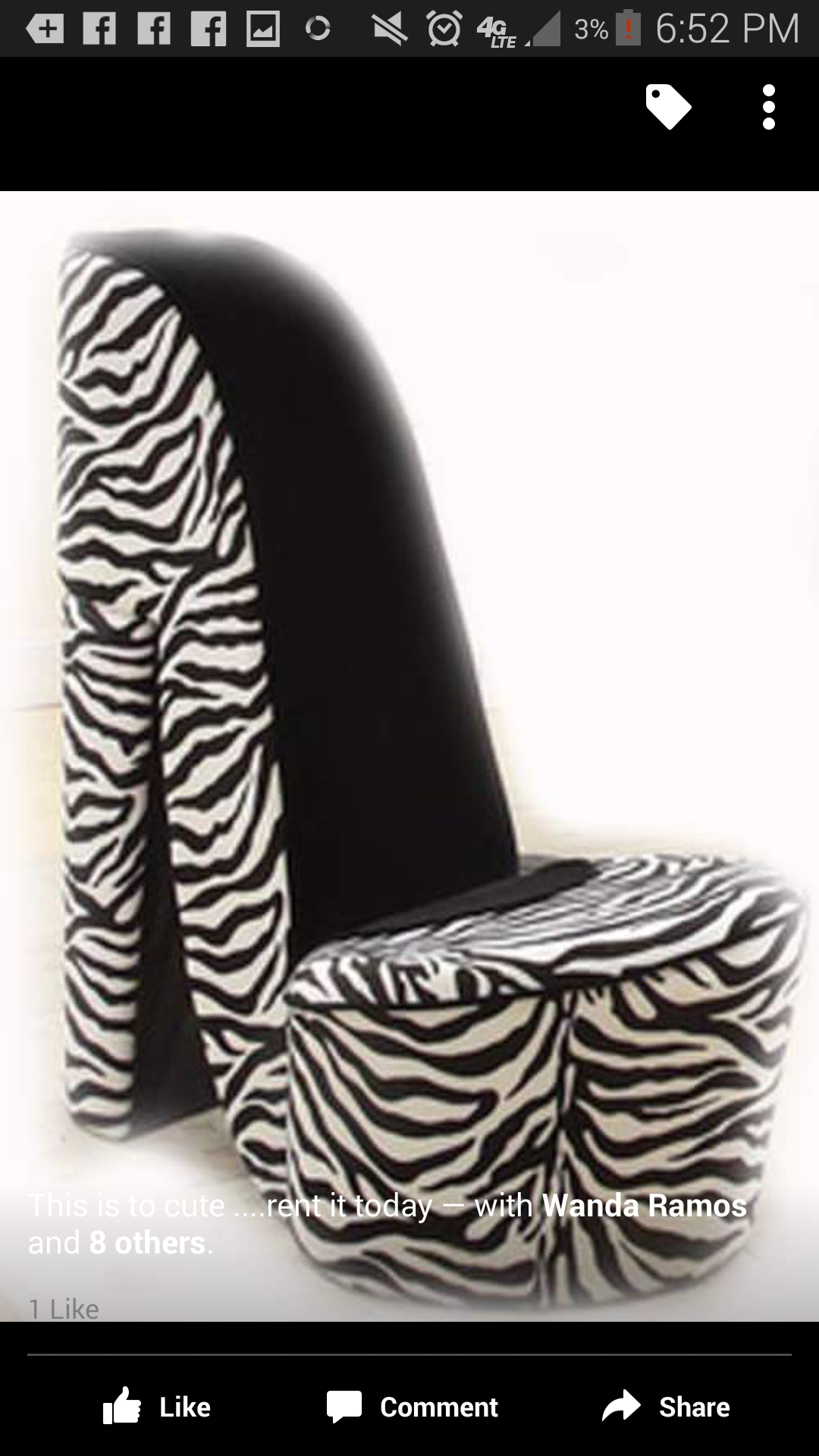 Zebra Chair Rental Zebra Chair Baby Shower Chair Shower Chair