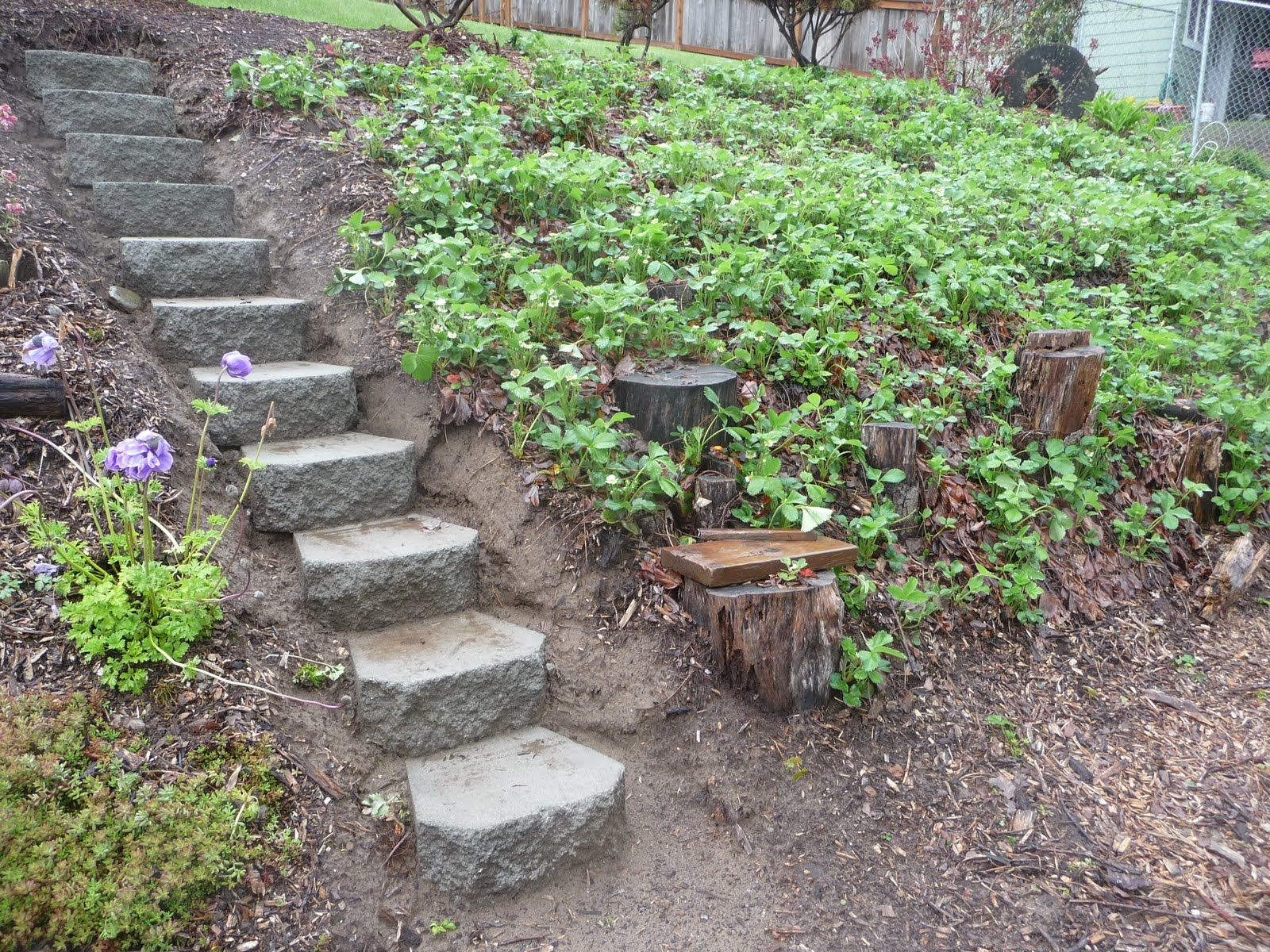Garden Steps for hill | Garden and Table : New Steps Into Strawberry ...