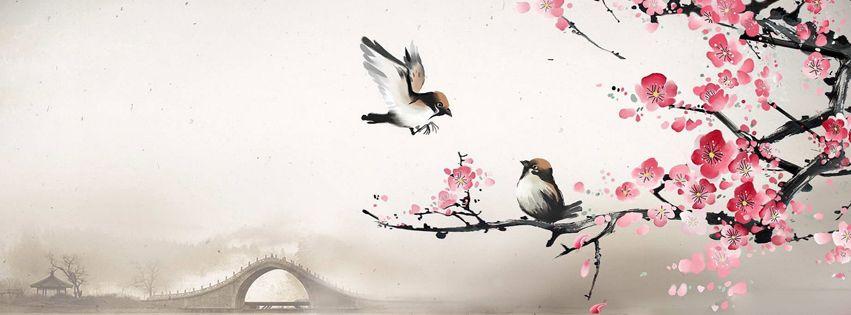 les oiseaux du printemps couverture facebook facebook twitter linkedin cover pics. Black Bedroom Furniture Sets. Home Design Ideas