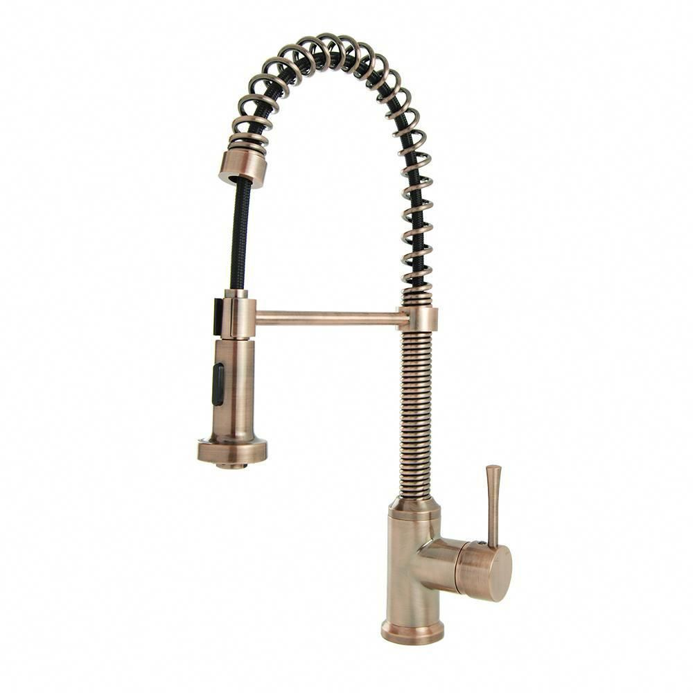 Brienza Residential Single Handle Spring Coil Pull Down Sprayer