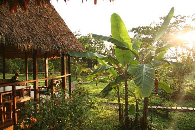 Romero Rainforest Lodge In Manu National Park, Peru