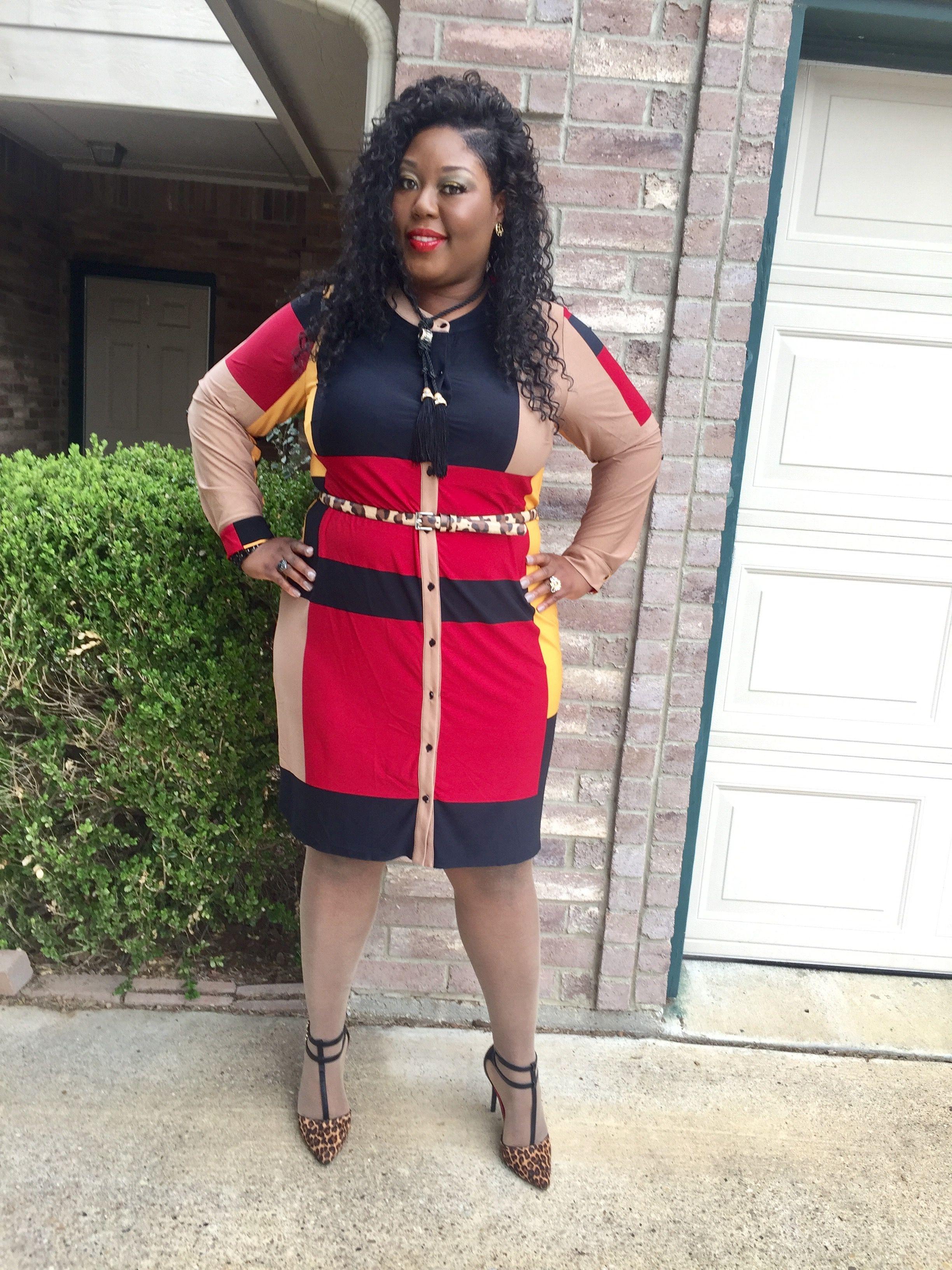 Ashley Stewart Color Block Button Dress Leopard Accessories Plus