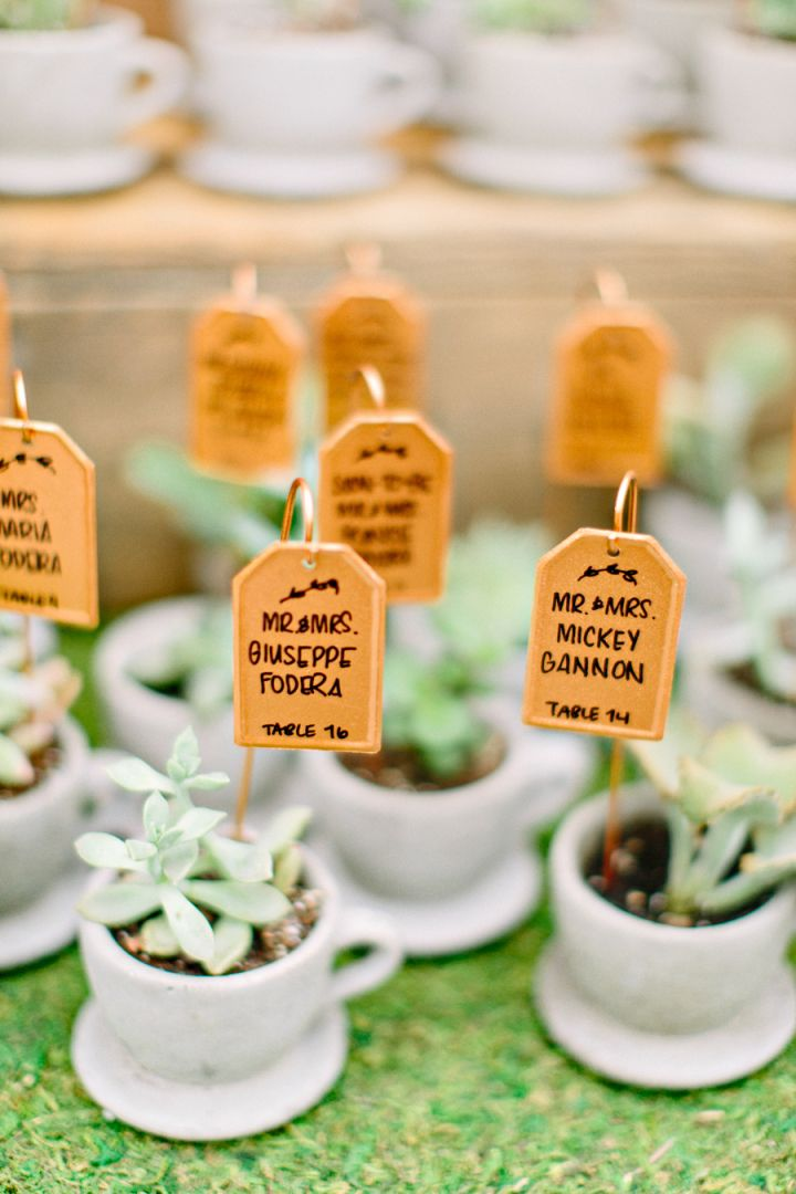 Unique wedding reception ideas on a budget – Little plant in teacup wedding favors and escort cards
